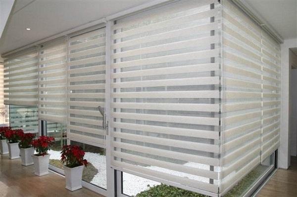 zebra blinds sharp point